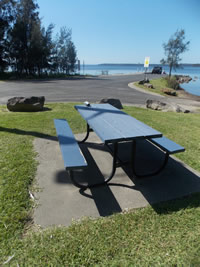picnic table & ramp